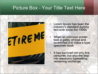 0000082851 PowerPoint Template - Slide 13