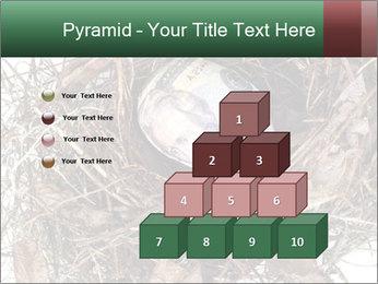 0000082851 PowerPoint Templates - Slide 31