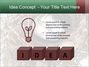 0000082851 PowerPoint Template - Slide 80