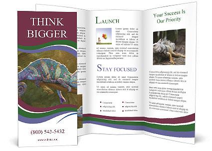 0000082856 Brochure Template