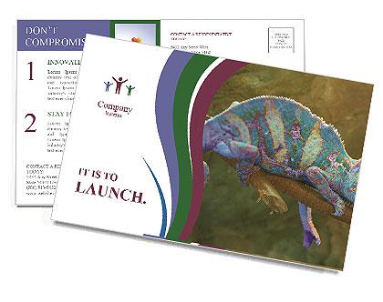 0000082856 Postcard Templates
