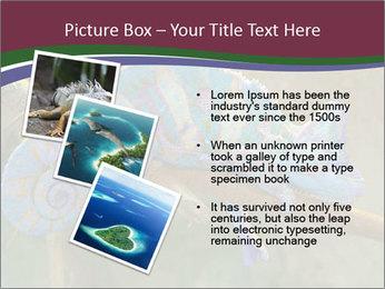 0000082856 PowerPoint Templates - Slide 17