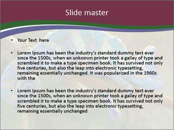 0000082856 PowerPoint Templates - Slide 2