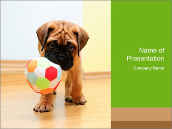 0000082857 PowerPoint Template - Slide 1