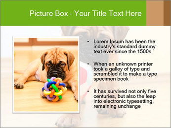 0000082857 PowerPoint Templates - Slide 13
