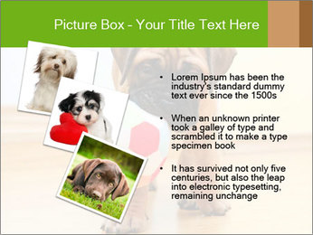 0000082857 PowerPoint Templates - Slide 17