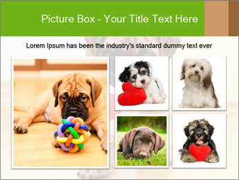 0000082857 PowerPoint Template - Slide 19