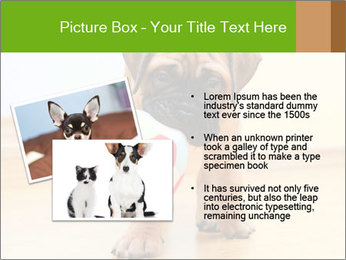 0000082857 PowerPoint Templates - Slide 20