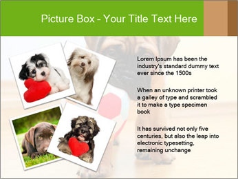 0000082857 PowerPoint Templates - Slide 23