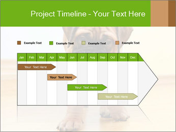 0000082857 PowerPoint Templates - Slide 25