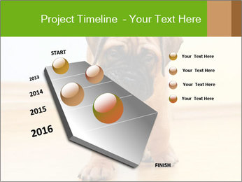 0000082857 PowerPoint Templates - Slide 26
