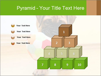 0000082857 PowerPoint Template - Slide 31