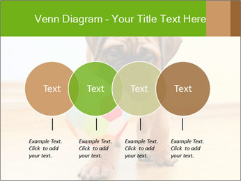 0000082857 PowerPoint Templates - Slide 32