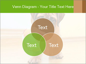 0000082857 PowerPoint Templates - Slide 33