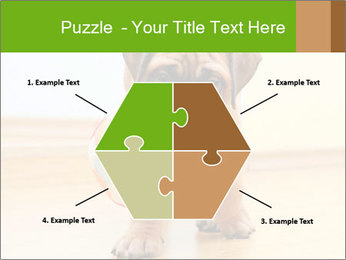 0000082857 PowerPoint Templates - Slide 40