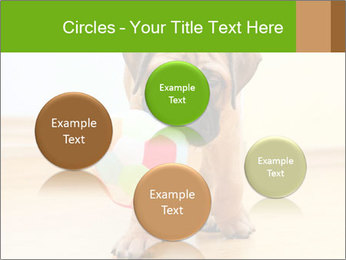 0000082857 PowerPoint Templates - Slide 77