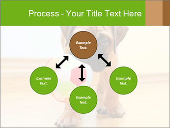 0000082857 PowerPoint Template - Slide 91