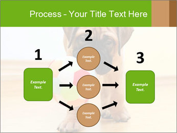 0000082857 PowerPoint Template - Slide 92