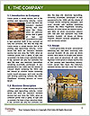 0000082858 Word Template - Page 3
