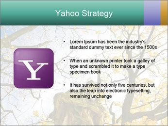 0000082862 PowerPoint Template - Slide 11
