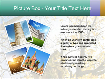 0000082862 PowerPoint Template - Slide 23