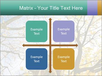 0000082862 PowerPoint Template - Slide 37