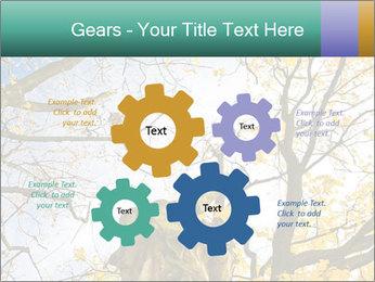 0000082862 PowerPoint Template - Slide 47