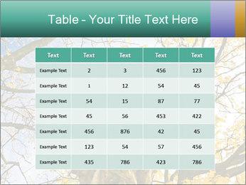 0000082862 PowerPoint Template - Slide 55