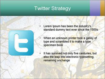0000082862 PowerPoint Template - Slide 9