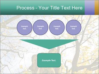 0000082862 PowerPoint Template - Slide 93