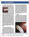 0000082863 Word Template - Page 3