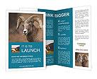 0000082871 Brochure Templates