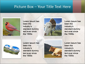 0000082871 PowerPoint Template - Slide 14