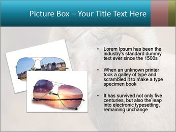 0000082871 PowerPoint Template - Slide 20