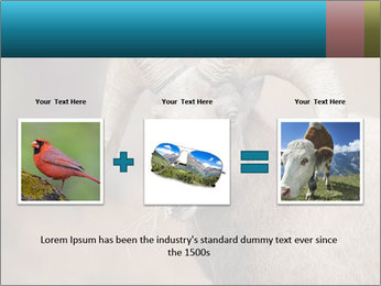 0000082871 PowerPoint Template - Slide 22
