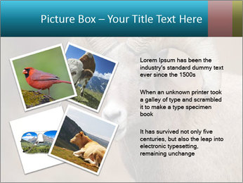 0000082871 PowerPoint Template - Slide 23