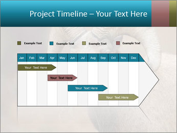 0000082871 PowerPoint Template - Slide 25