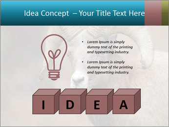 0000082871 PowerPoint Template - Slide 80