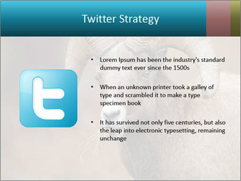 0000082871 PowerPoint Template - Slide 9