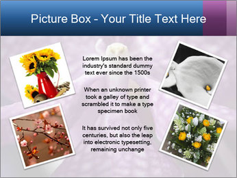 0000082873 PowerPoint Templates - Slide 24