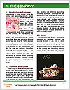 0000082884 Word Template - Page 3