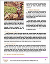 0000082888 Word Template - Page 4
