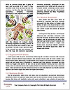 0000082890 Word Templates - Page 4