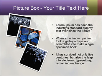 0000082906 PowerPoint Template - Slide 17