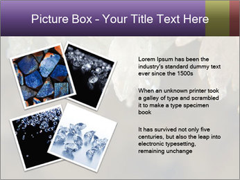 0000082906 PowerPoint Template - Slide 23