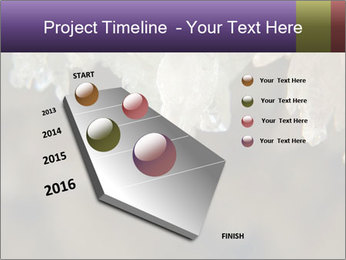 0000082906 PowerPoint Template - Slide 26