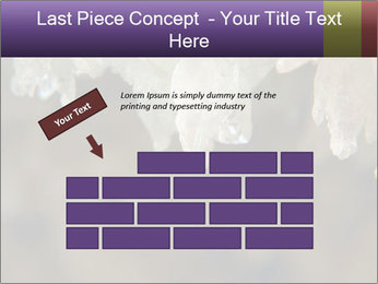 0000082906 PowerPoint Templates - Slide 46