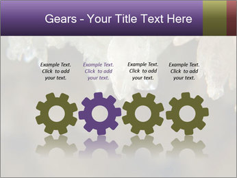 0000082906 PowerPoint Templates - Slide 48