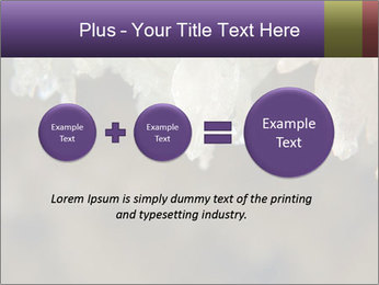 0000082906 PowerPoint Template - Slide 75
