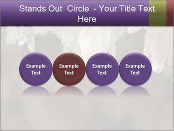 0000082906 PowerPoint Template - Slide 76